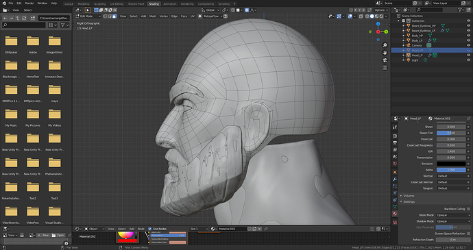 Head_Profile_Retopo_Mesh