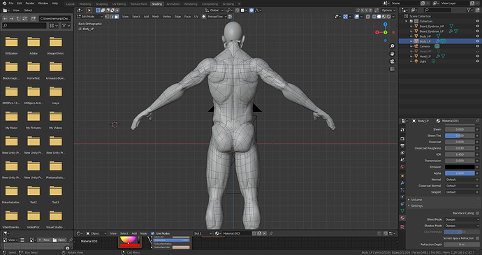 Body_Back_Retopo_Mesh