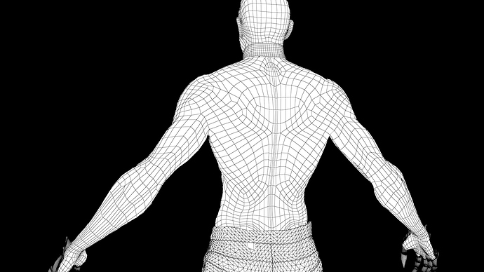 wireframe_dos
