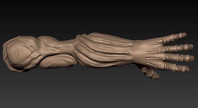 Details-Arms