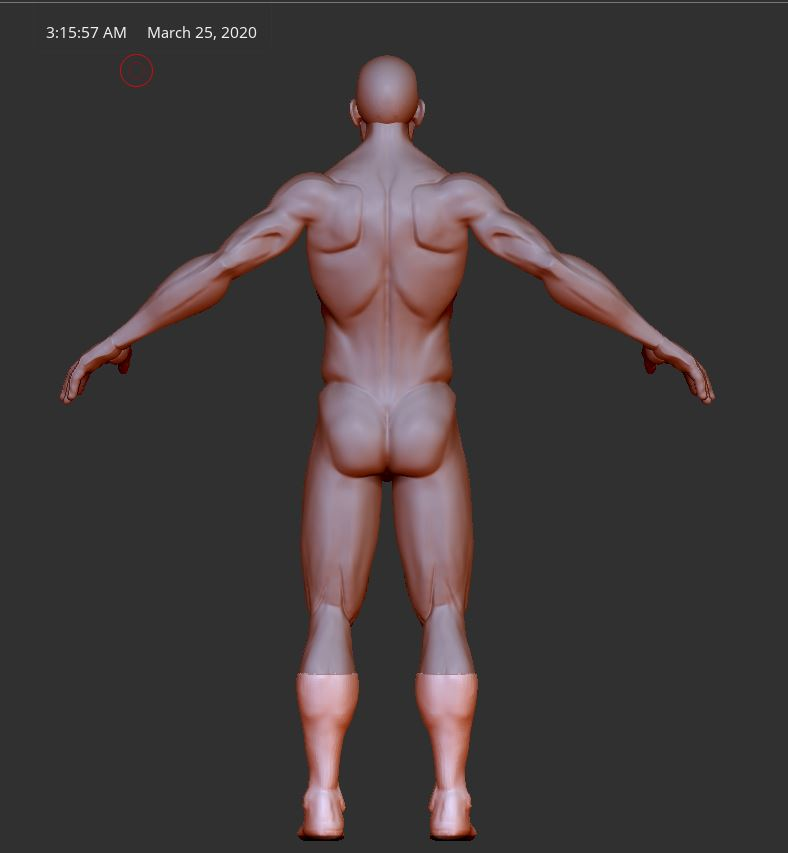 Sculpt_back